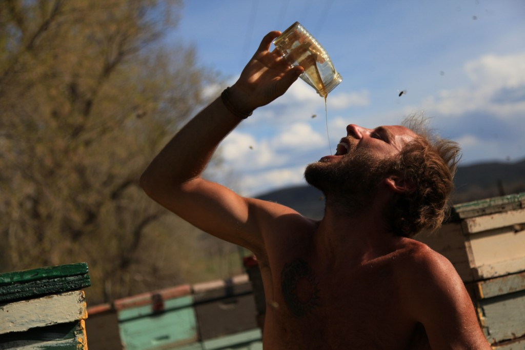 Rob Greenfield Drinking Honey with Bees