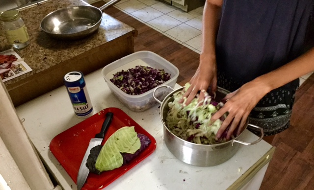 Healthy Eating on $4 a Day in a Food Desert. Fermenting Begins- saurkraut 2